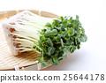 vegetable, vegetables, botanic 25644178