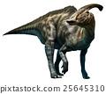 Parasaurolophus walkeri  25645310