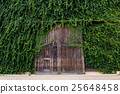Big wooden door with climber leaves 25648458