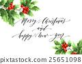 christmas, holly, vector 25651098