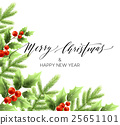 christmas, holly, vector 25651101