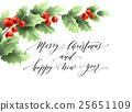 christmas, holly, vector 25651109
