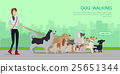 Dog Walking Banner. Woman Walk with Different Dogs 25651344