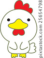 chicken, bird, birds 25654798