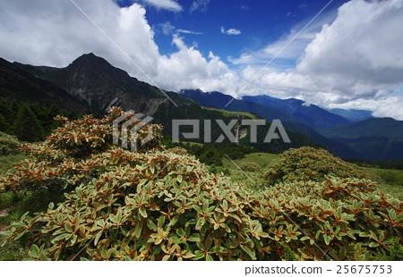 夏季南湖大山 25675753