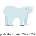 동물, 벡터, 곰 25677258