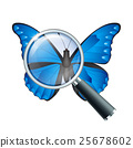 Magnifying glass and Butterfly 25678602