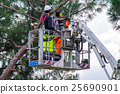 Professional Lumberjacks cuts trunks on the crane 25690901