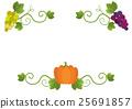 南瓜 葡萄 常春藤 25691857