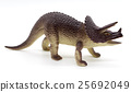Triceratops dinosaurs toy on white background 25692049