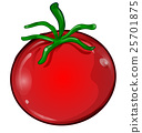 tomato cartoon isolated on white background 25701875