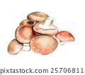 Fruits & Vegetables 烹饪 香菇 食品 25706811
