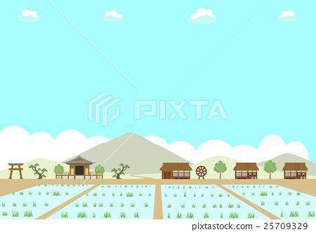 Rural rice field 25709329
