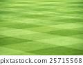 grass field 25715568