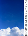 雲蓋 25741073