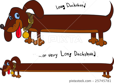 Long fun dachshund 25745781