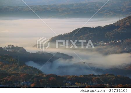 morning mist, fog, foggy 25751105