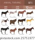 Donkey breeds icon set. Animal farming 25751977