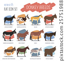 Donkey breeds icon set. Animal farming. 25751988