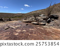 The landscape of Caatinga in Brazil 25753854