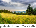 meadow, forest, mountain 25779507