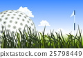 Golf ball on the green grass, close up 25798449