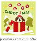 Merry Christmas Greeting Card  25807267