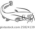 Cat fish illustration 25824139