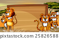 Frame template with tigers in the field 25826588