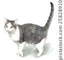 White gray bowl Cracked cat 25828910