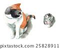 Mikuri cat and chibi cat 25828911