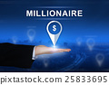 millionaire button on blurred background 25833695