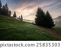 meadow, fog, mountain 25835303