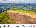 path, meadow, mountain 25835379