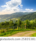 landscape, mountain, forest 25835381