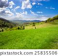 meadow, village, mountain 25835506
