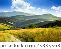 meadow, path, mountain 25835568