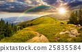 meadow, landscape, mountain 25835584