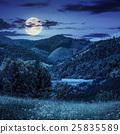 meadow, mountain, landscape 25835589