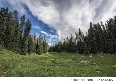 Landscape in the Rocky Mountains 25836565