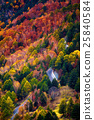 Beautiful Autumn mountain in Takayama Village 25840584