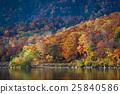 Biwa pond on Shigakogen, Yamanouchi, Nagano, Japan 25840586