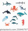 Marine Life Vector Design Illustration 25846797