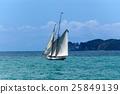 Sailing Ship - Gulf of La Spezia Italy 25849139