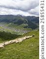 山羊 动物 山峰 25855431