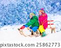 Kids having fun on sleigh ride 25862773