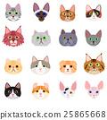 Cat face set พื้นหลังสีขาว 25865668