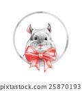 鼠標 老鼠 南美栗鼠 25870193