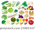 Vegetable illustration material set 25885347