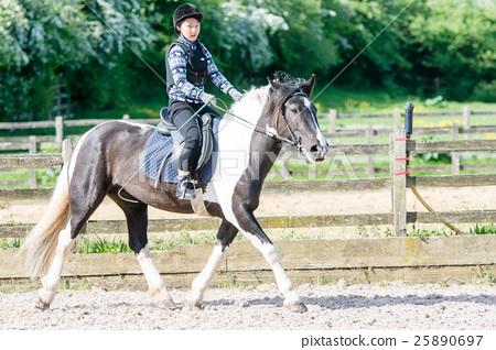 練習騎馬的女孩 25890697